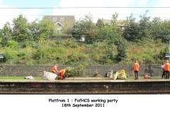 180911 platform 1 flower bed 3a